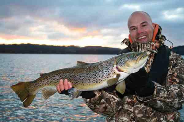 Søerne i det midtjyske søhøjland byder på pæne bestande af søørred som fx denne flotte fisk.