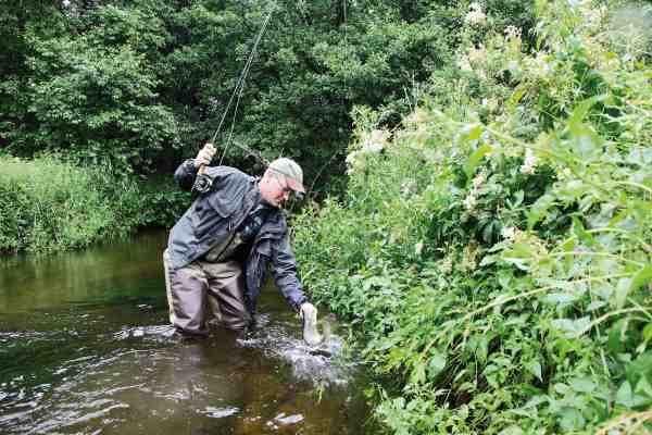 Forfatteren nyder en dag i åen i selskab med en let fluestang, en æske skumfluer og en ilter havørred