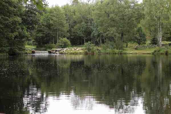 Den største af de to søer i Bondemølla Sportsfiske. På modsatte side ses det gennemstrømmende vand, som forbinder søerne. Lige nedenfor her bliver der ofte taget fisk.