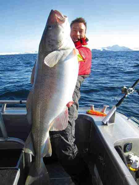 Magnus Axelsen var en af de danskere, der havde succes i foråret – her med en 31,5 kilos skrei.