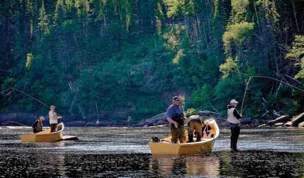 Newfoundland har 206 lakselve og der er 368.000 kvadratkilometer uspoleret vildmark – bogstavelig talt rundt om hjørnet.