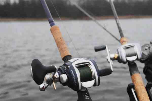 Lavprofil hjul med knarre er en sjældenhed. Revo Toro og Revo Toro Winch er to superfede hjul til kastefiskeri efter gedder, som også egner sig til fiskeri med agnfisk, da de er udstyret med knarre, og man dermed kan høre når der er hug.