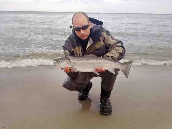 Tue Blaxekjær har fanget masser af havørred op til 6 kilo på Falster. Denne 4 kilos tog en Snurrebasse str. 4 ved Pomlenakke.