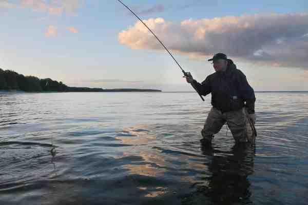 Endnu en fin havørred er faldet for en af Johns woblere. Der skulle ikke mere end nogle få kast til, den aften Fisk & Fri var med.
