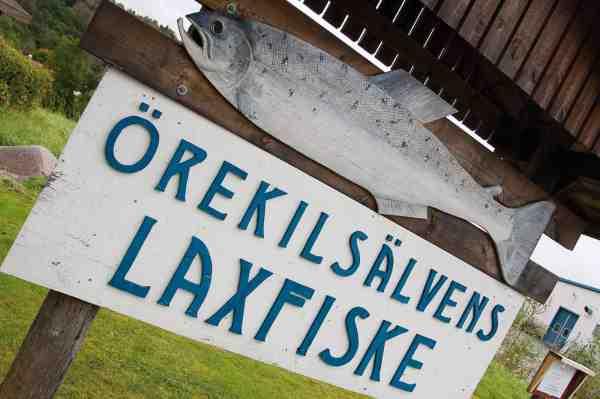 En megalaks i træ markerer, hvor man køber sine fiskekort ved Örekil.