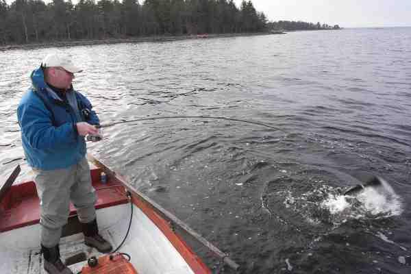 Pelles kammerat Sören Grimshave i fuld færd med at fighte en flot femkilos havørred fra båd ved Påskallavik.