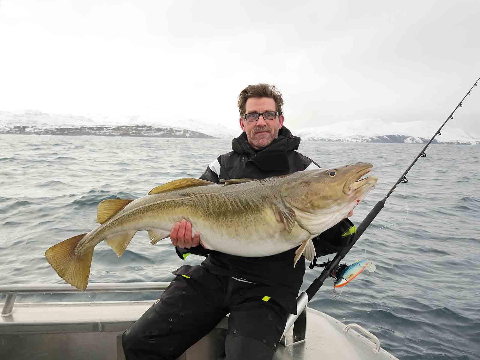 Sørøya – verdens vildeste torskefiskeri
