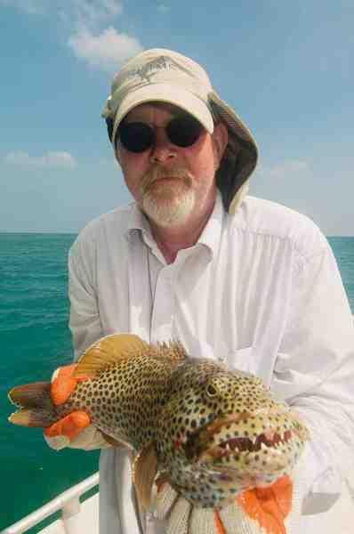 Jørn Bæk blev hurtigt fascineret af artsrigdommen og fiskede meget med en relativ let stang og en Westin Jerk med udskiftede kraftige saltvandskroge. Det gav adskillige arter, heriblandt denne smukke coral trout.