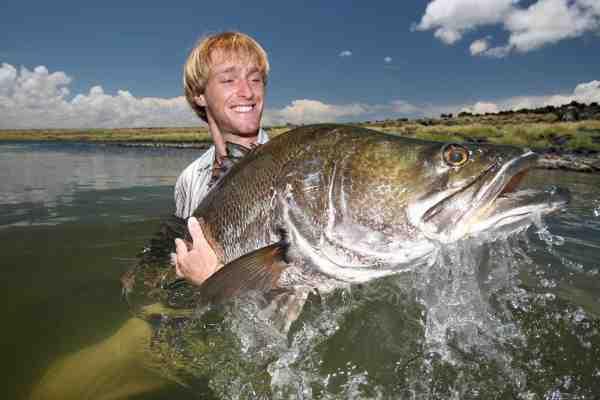Nilaborren er et kendt Big Game trofæ. En gammel kending på Jakubs liste. Og det er der ikke noget at sige til, da den med en maksimal længde på op til 2 meter og 200 kilo, absolut er noget af en monsterfisk.