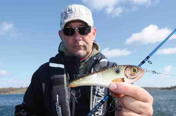 Trumman fremviser en Buster Jerk i farven Drutten. Denne bruger han ofte i solrigt vejr og den gav da også dagens største fisk på 11,1 kilo...