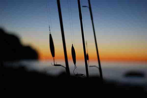 Stængerne og fiskerne holder en lille pause, men om lidt er det på den igen.