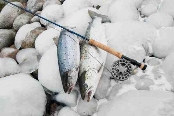 Den værst tænkelige vejrudsigt til havørredfiskeri blev stædigt modsagt af disse fire iskolde overspringere.