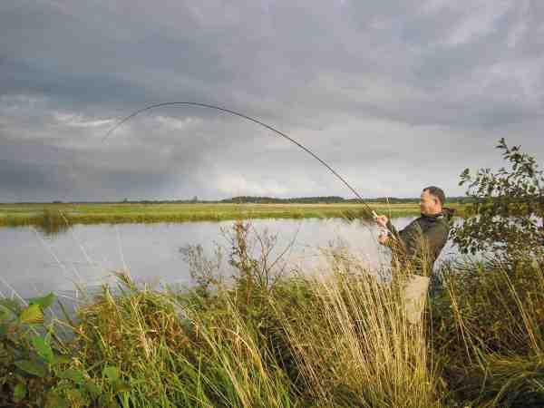 Når fisken skal genudsættes, gælder det om at fighte den så hurtigt som muligt.