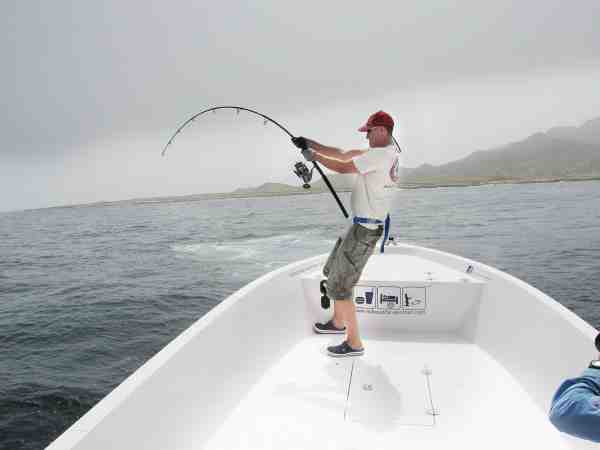 Thomas Munksgaard blev revet rundt af Omans store GT'ere og knækkede bl.a. en af sine stænger. Det lykkedes dog også at lande en imponerende stribe fisk.