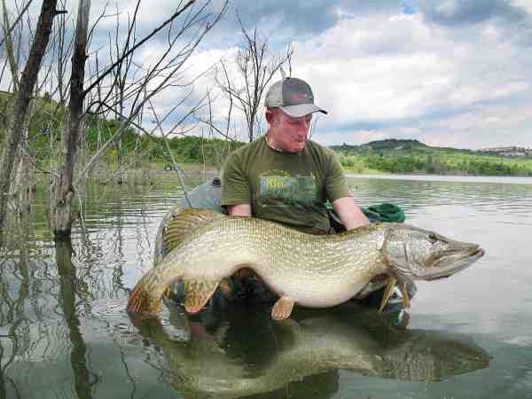 The Pikeman med endnu en fortjent belønning for sit opsøgende pionerfiskeri fra flydering i Toscanas småsøer.