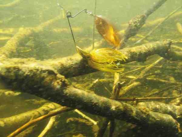 Når der er mange snags på bunden er spinnerbaits som dette i sit es. Og det er ofte lige præcis her, at der gemmer sig nogle gode fisk.