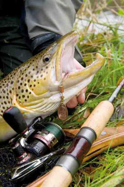 Esben foretrækker grøn fletline til åhavørred, fordi den er sværere for fisken at se, når den står inde under brinken i en smal å med overhæng af siv og urter.