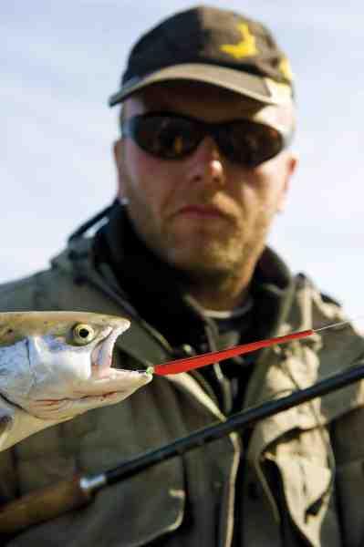 Selvom man blindfisker, hjælper pol-brillerne til at spotte følgere og potentielle standpladser samt oplagt fourageringsområder, hvilket kan være en stor fordel.