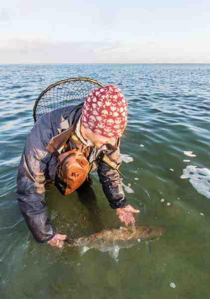 David genudsætter en smuk blankfisk med et »Tak for kampen. Vi ses forhåbentligt igen«.