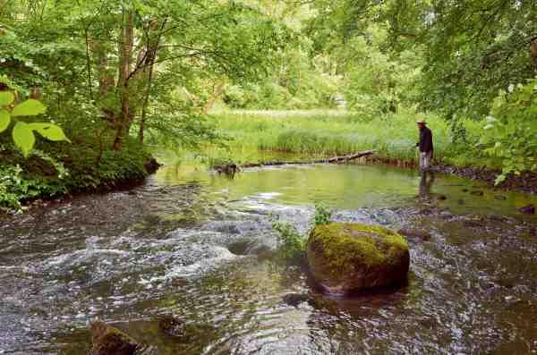 At stå med sin tenkara stang ved et lille idyllisk vandløb er ren zen.