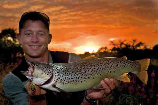 En blændende smuk fisk, der fald for Esbens Mepps på den sidste fotosession til denne artikel.