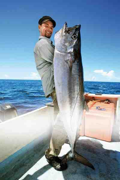 Speedjiggerens allermest efterstræbte bytte: Dogtooth tuna. Det er drømmen om fisk som denne, som får tossede lystfiskere til at opsøge nye, ukendte og måske ikke helt ufarlige græsgange. Så vidt vi ved er Mads Søndergaards eksemplar på 37 kilo den største dogtooth nogensinde taget af en dansker.