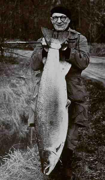 Den danske rekord for laks fanget i ferskvand indehaves af D.C. Dinesen og er en af de helt gamle danske rekorder. Fisken er fanget 15. april 1954 i Skjern Å og vejede hele 26,5 kilo. Jens Hogaard var ved åen samme dag denne historiske fisk blev fanget.