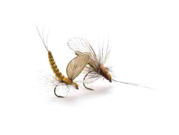 Realistiske imitationer bundet med J:sons produkter. Selvom samlesættene gør det væsentligt lettere, kræver disse fluer stadig en del fingerfærdighed, men resultatet er enormt flot.
