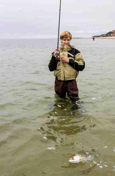 En 44 centimeters havørred har taget Cordelius flue på kanten af det mørke bælte.