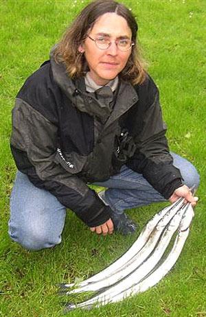 Stor hornfiskekonkurrence