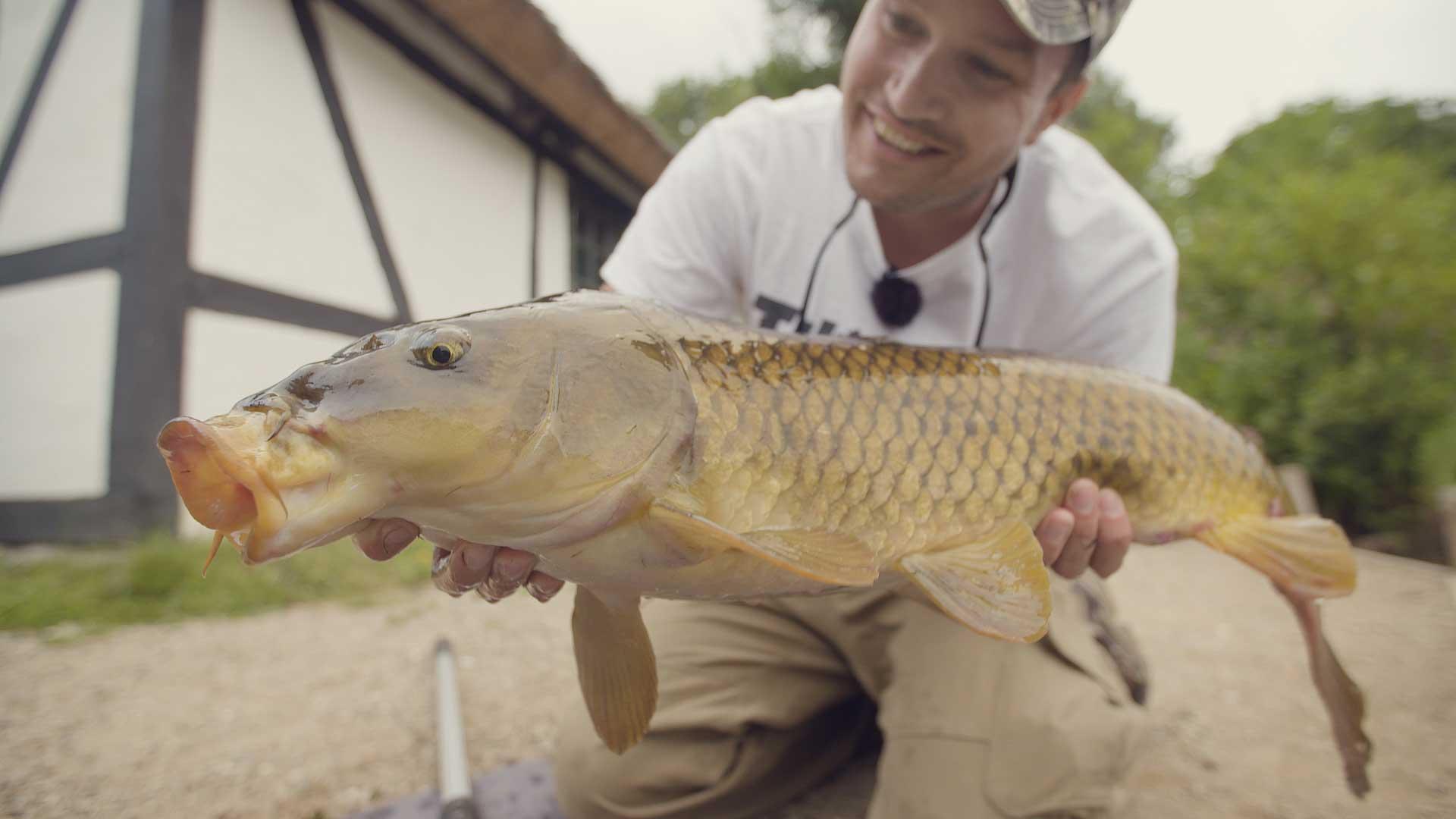karpe-fiskeguiden