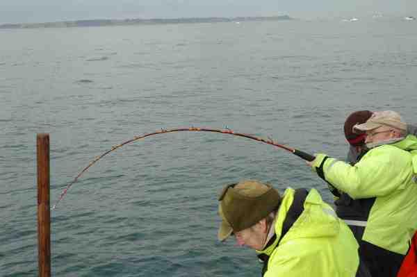 Karsten med fast fisk på Øresund.