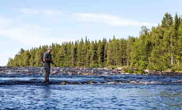 Sommerfiskeri på den svenske elv.