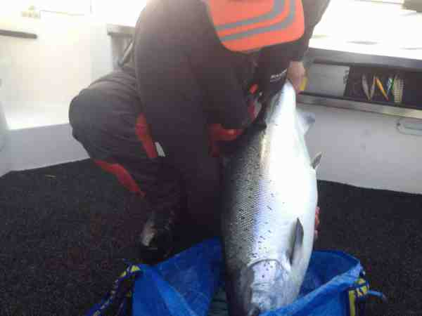 Kasper med den store laks. Kasper selv er en sund jyde på 2 meter og115 kilo