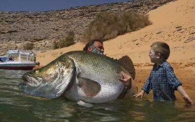 Ny mand: Lystfiskeriets vigtigste lobbyist i EU