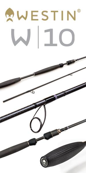 Westin W10