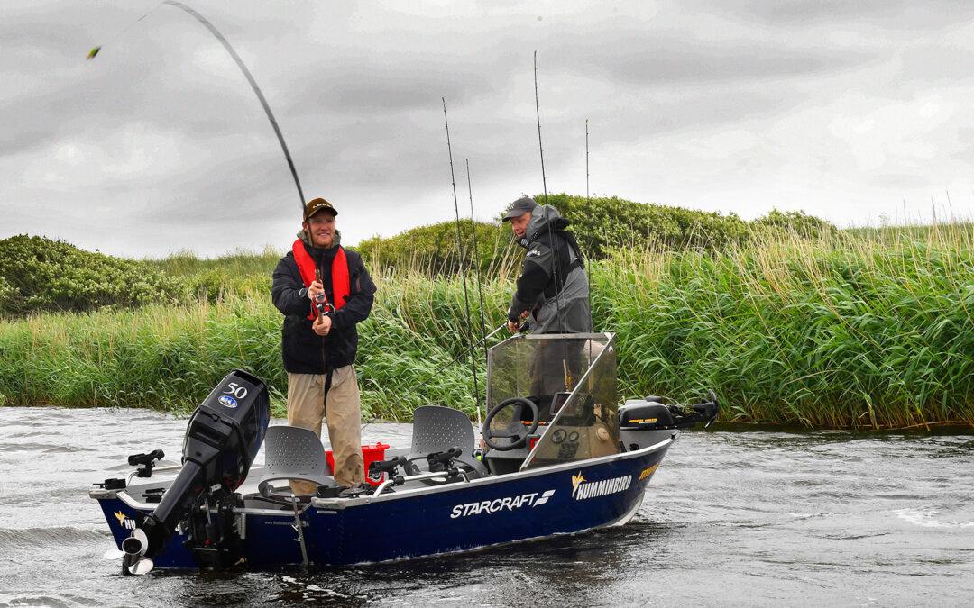 Fiskeri efter brakvandsgedder i Stadil Fjord