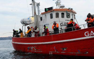 EFSA afholder EM i havfiskeri på Øresund i 2020