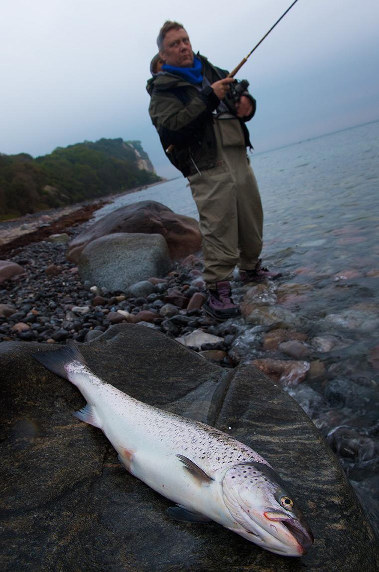 Michael Stryger med en fin havørred fra Møn