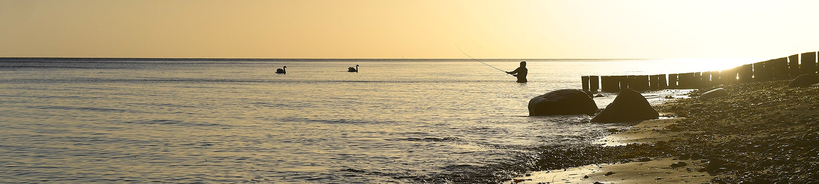 Gorm Andersen på kysten ved Stevns