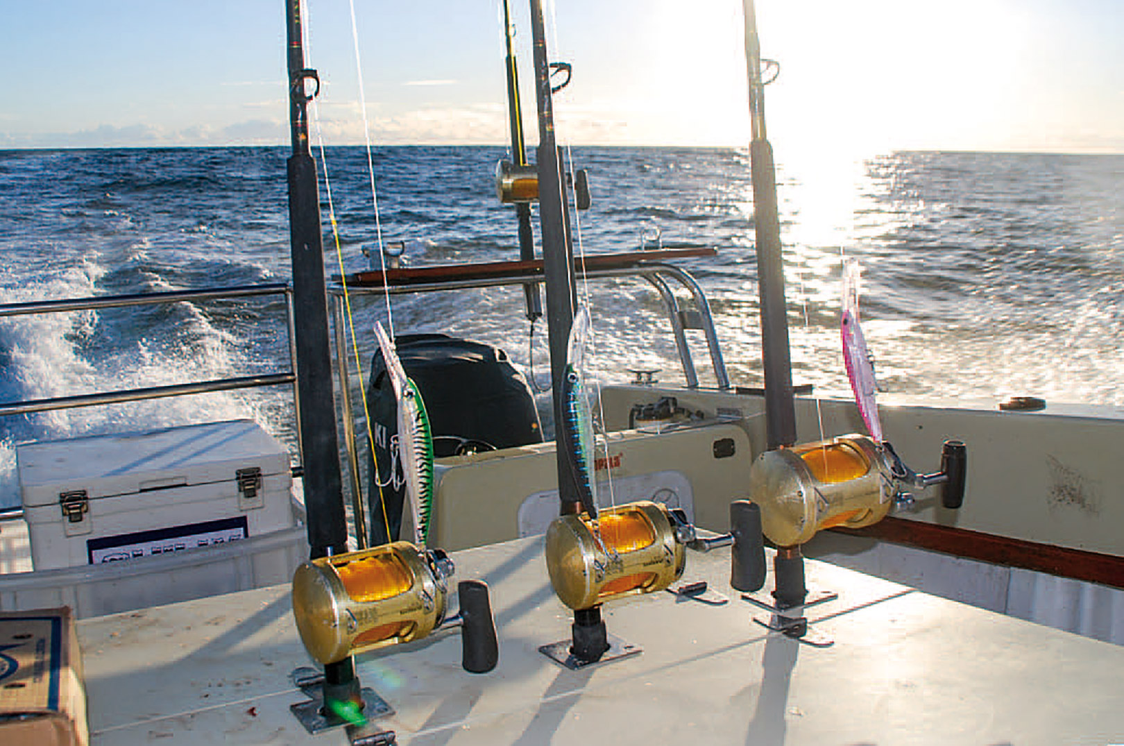 Fiskeri efter yellowfin tuna