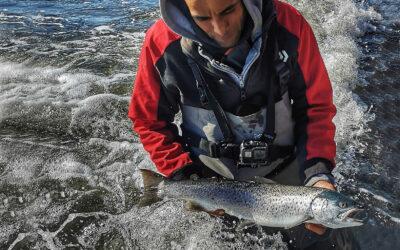 Kort tur til Stevns gav flere fine fisk