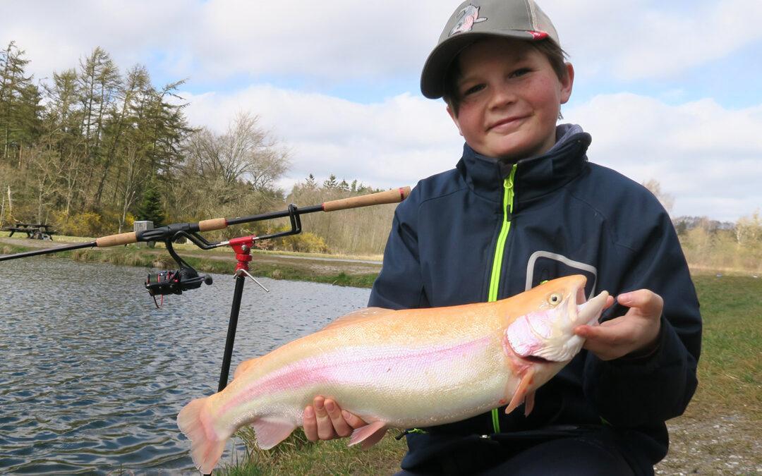 En flot regnbueørred taget på bundfiskeri i put and tak´en