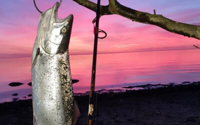 En fantastisk fisk i morgengryet