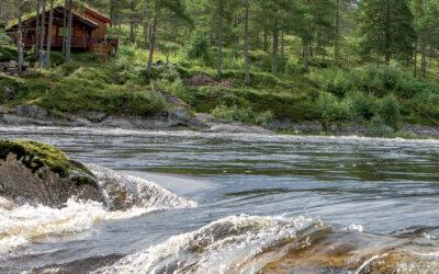 BAGERST I POOLEN: LAKS PÅ FOSNAKKEN