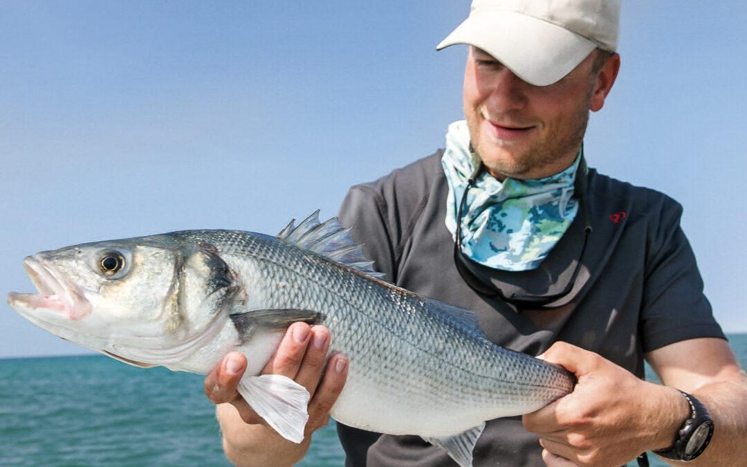 Frank Danielsen med stor bars taget på flue. Denne flotte fisk var kun få centimeter fra at slå den danske rekord for fluefanget bars, på 1,84 kilo fra 2008.