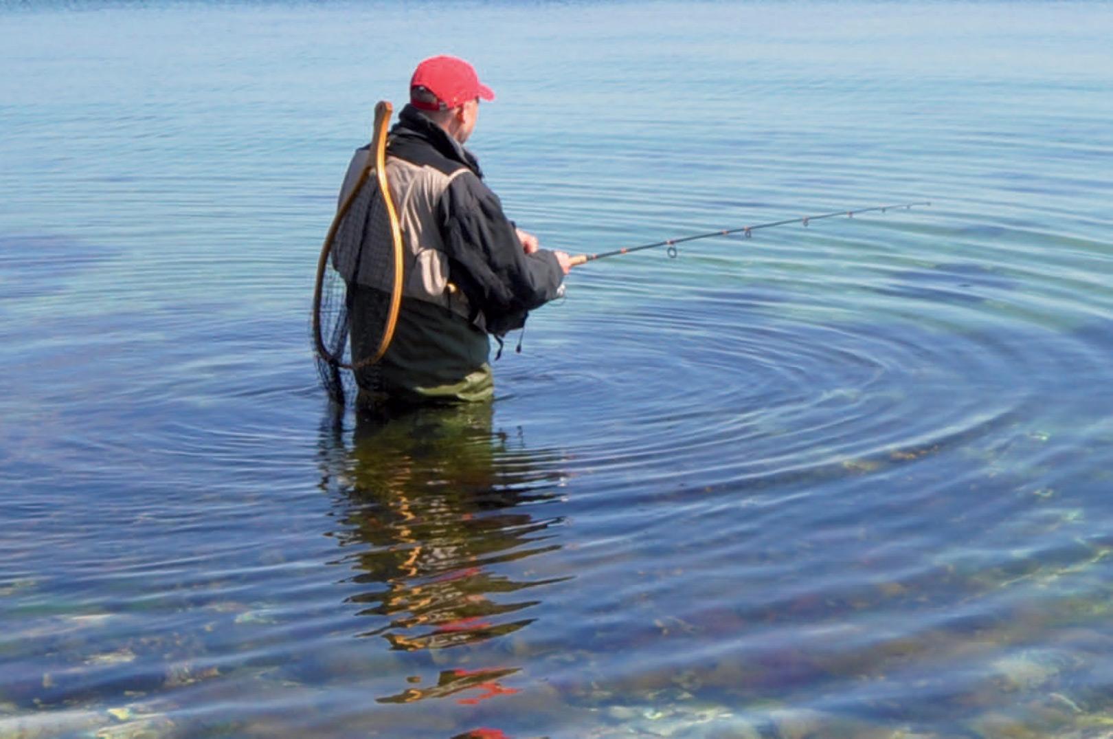 Fiskeri efter hornfisk er både sjovt og underholdende
