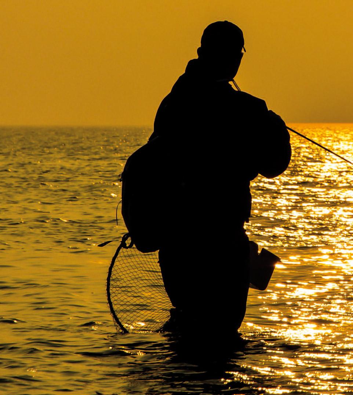 Sommer ved de danske havørredkyster kan være enormt produktivt. Mange af de større fisk begynder i denne periode at trække mod åerne, og hvis man er heldig kan man rende ind i en stime med mange og store fisk.