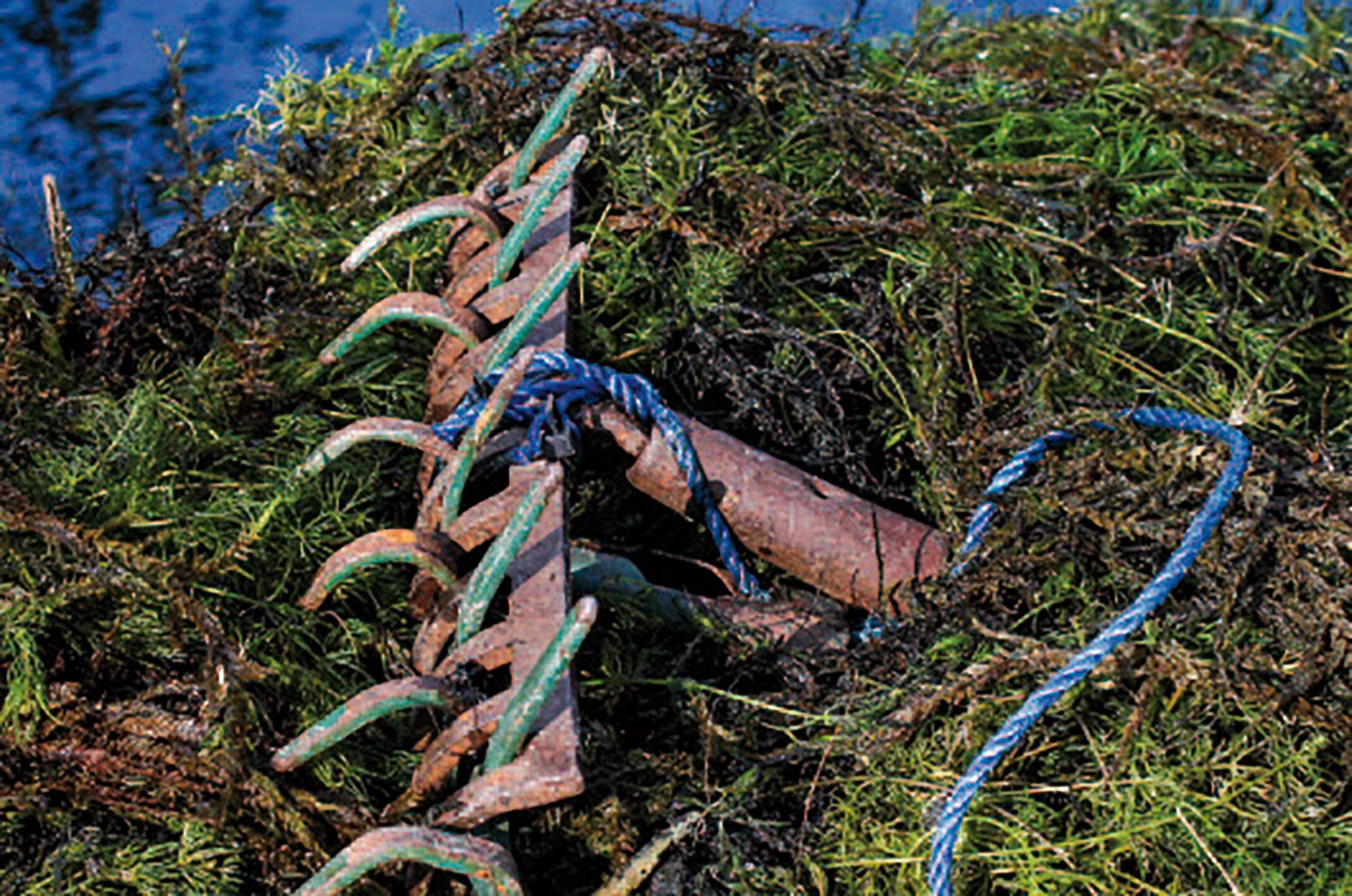 En grøderive er guld værd, når man skal rydde en plads for vandplanter, så det er til at komme til at fiske efter suderne.