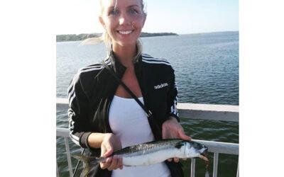 Fine makreller fra Munkholmbroen